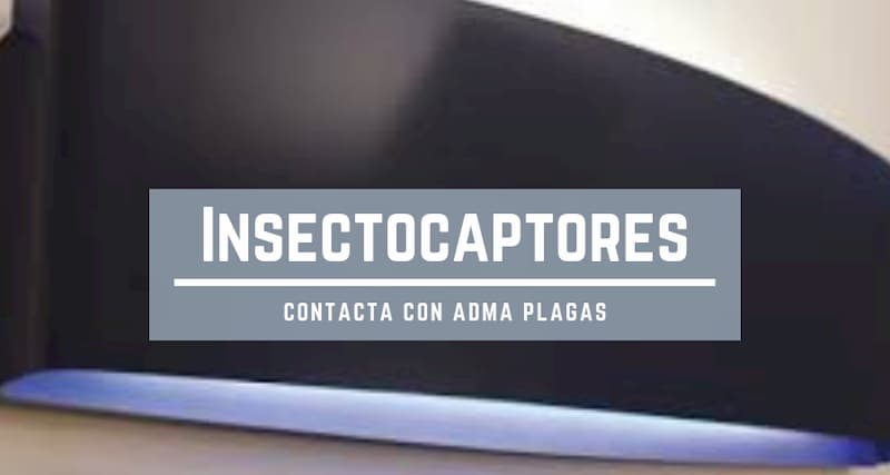 insectocaptores